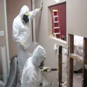 Commercial Mold Remediation in New Jersey