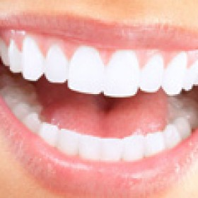 Receive Quality Dental Care From A Qualified & Trusted Dentist!