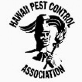 Meticulous Rodent Baiting & Trapping Program for You in Hilo