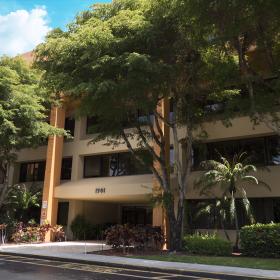 About Palm Beach Software Design