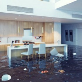 Ideal Insurance Agency is your trusted solution for Homeowner Insurance Policy