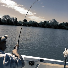 Striped Bass Fishing in Delta CA For Excellent Fishing Experience