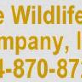 Best Animal Control Company in Reynoldsburg