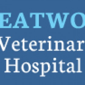 Veterinarians for Comprehensive Surgical Care in Richmond