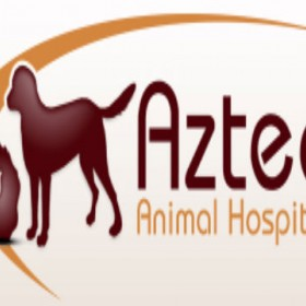 Dog Boarding/Daycare Services from Aztec Animal Hospital!