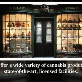 Herbology - Medical Marijuana Dispensary in Gaithersburg, MD
