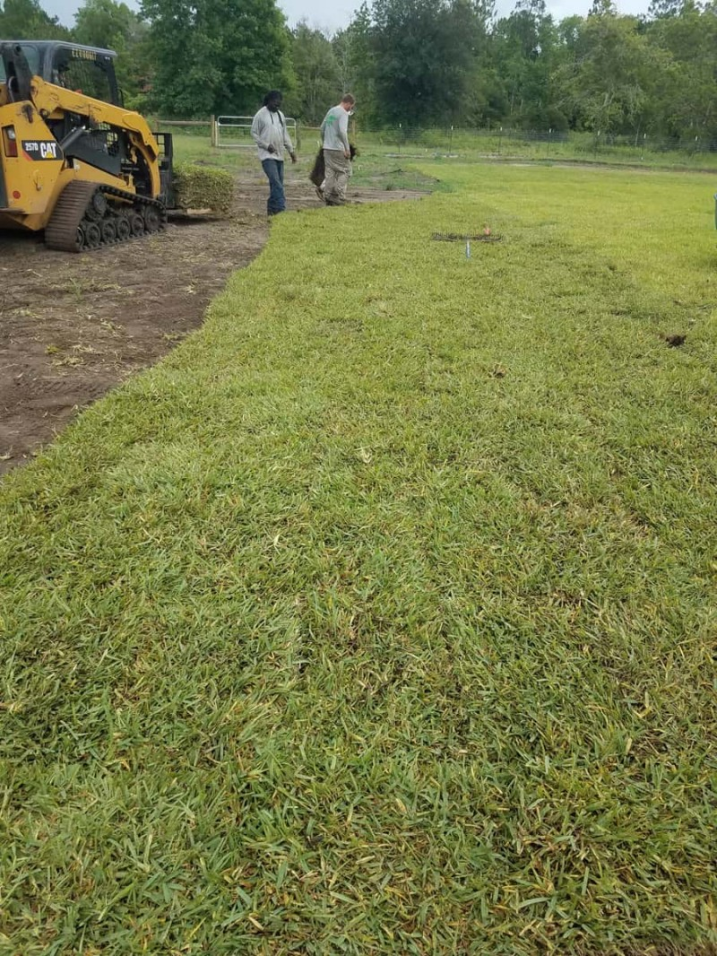 The Highest Quality Affordable Sod Installation Services In St Augustine