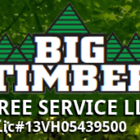 Find Best Tree Removal Experts in Voorhees, NJ