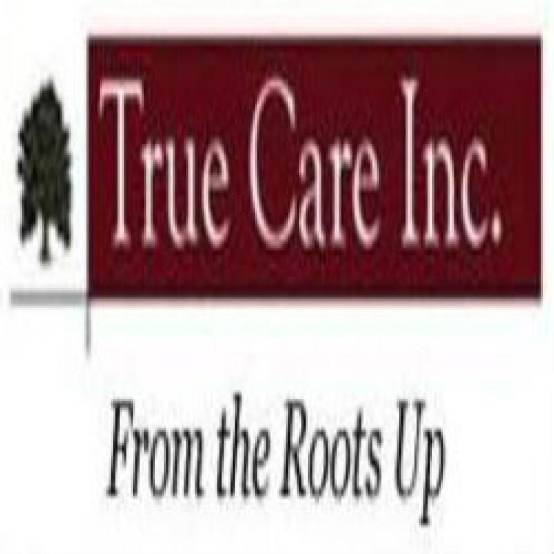 Get Tree & Shrub Fertilization Enhancements in Wilsonville, OR