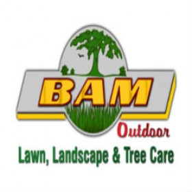 Need Professional Lawn Care Service in Fishers, IN?