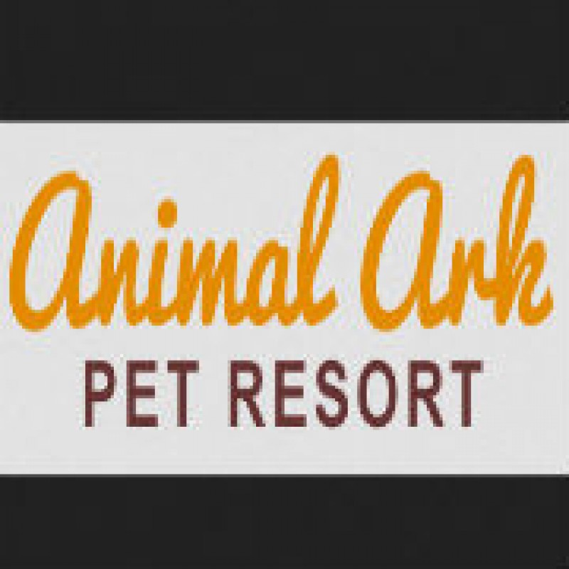Find Quality Pet Boarding Services for Your Dog
