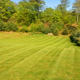 Contact A Landscape Design Company In Darien, CT