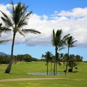 Golf Club Course & Layout