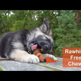Nutri Chomps: Safe, Healthy, and a Great Alternative to Rawhide Chews