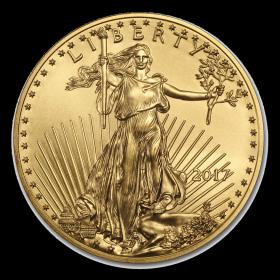 Gold American Eagle 1 oz Coin