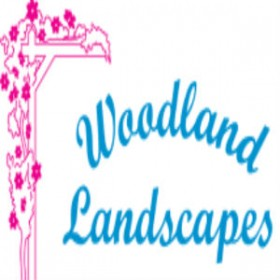 Transform Your ordinary Hardscaping & Landscaping Into Extraordinary!
