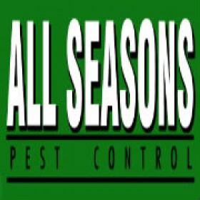 Professional Pest Control Service in Lakewood WA