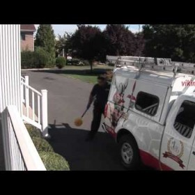 Viking Pest Control - Your Best Choice In Pest Control