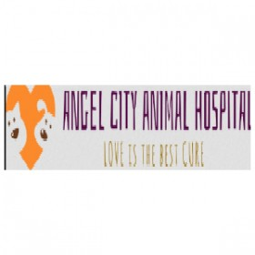 Full Medical Services Offered By Pet Care Clinics