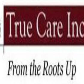 Need Plant Health Care Service in Wilsonville, OR?