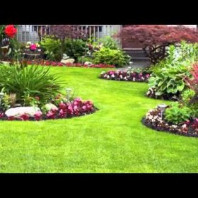 High Quality Lawn Care & Landscaping Services in Charlotte