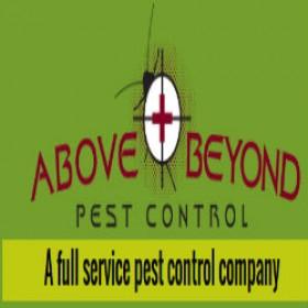 Affordable Bed Bug Fumigation Services in Boynton Beach Florida