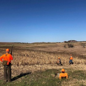 Best Pheasant Hunting Trips