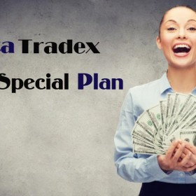 Metatredex Special Plan